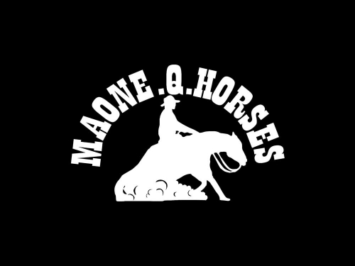 Maone QH Reining Horse